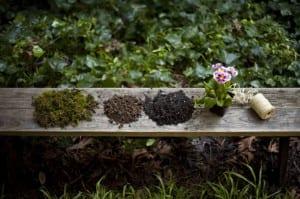 Cómo hacer un jardín de Kokedama