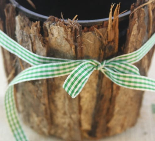 Macetas decoradas con corteza de árbol