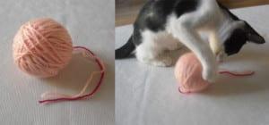 Bola de lana para gato