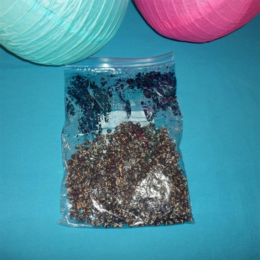 Legumbres teñidas de azul en proceso de tinte