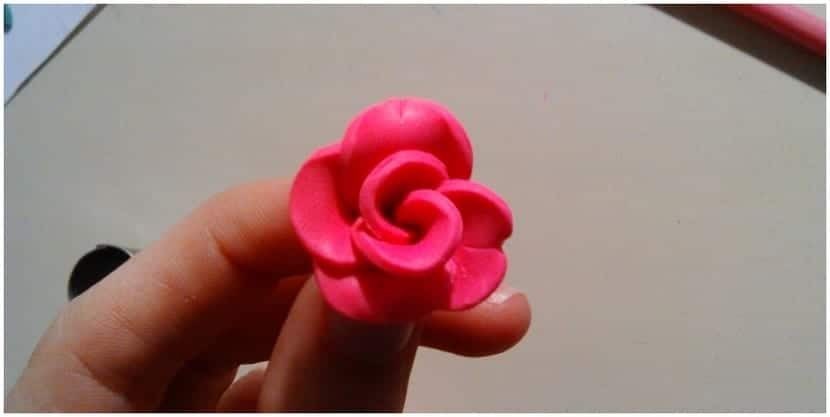 Rosa (Copiar)