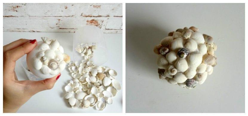 bolas conchas