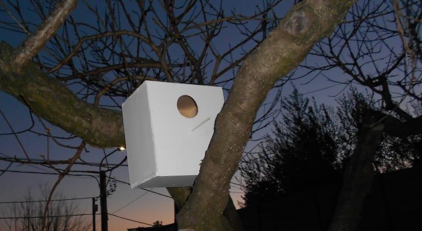 cómo hacer una casa de madera para pájaros