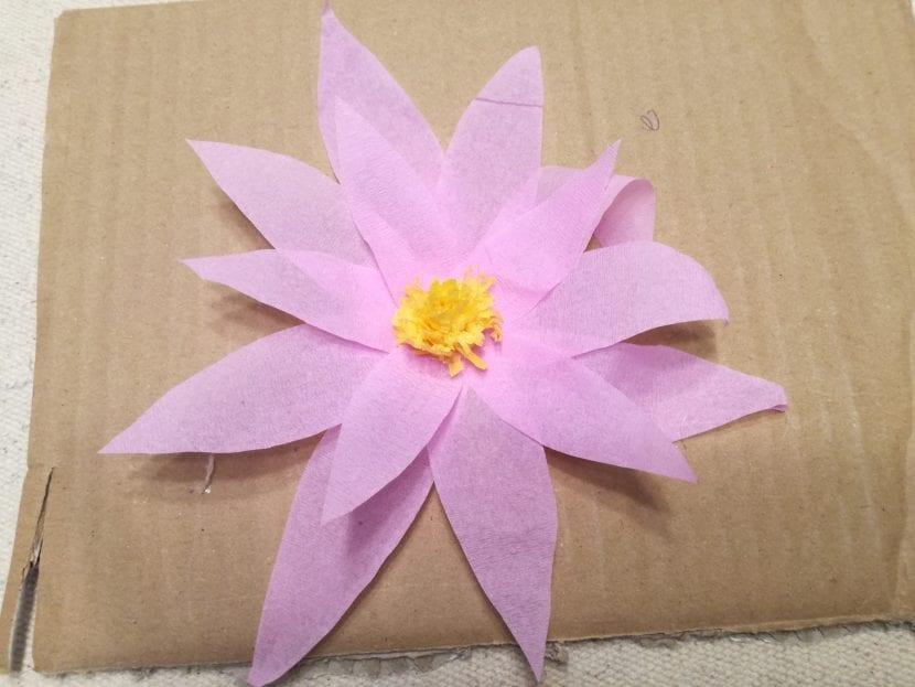 flor de loto paso 8