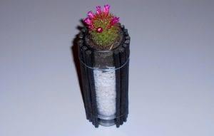 Cómo hacer una maceta rústica y moderna para colocar un cactus